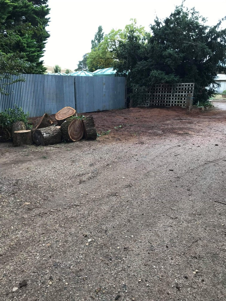garden beautified after removing a tree stump in Ballan